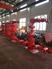 Dual Wing Wellhead Christmas Tree API 6A Assembled With Hydraulic Master Valve